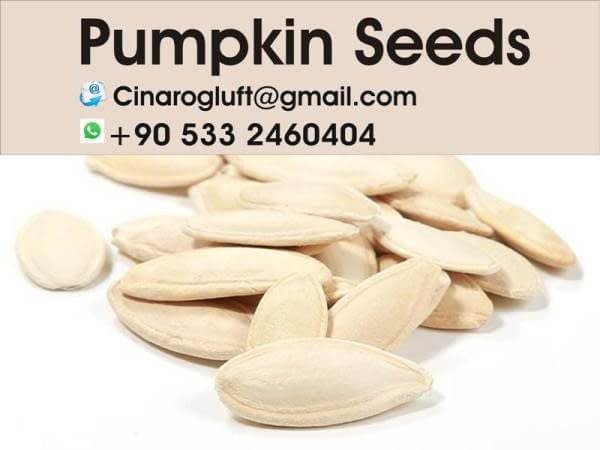 export pumpkin seeds