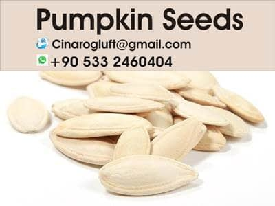 roasted pumpkin seeds calories