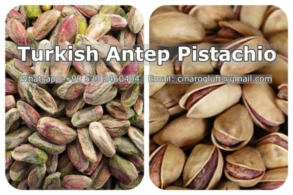Turkish Pistachios Wholesaler