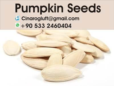 roasted pumpkin seeds calories