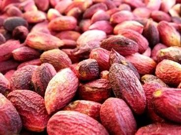 raw dried turkish antep pistachio