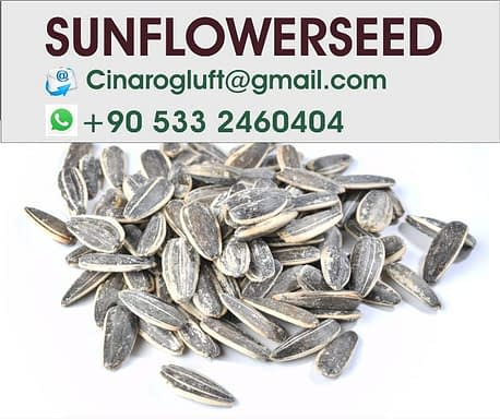 sunflower seeds cheap
