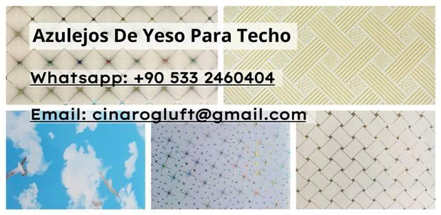 Azulejos de yeso para techo